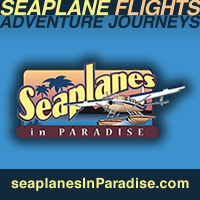 seaplanes in paradise sightseeing flights puerto rico