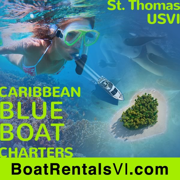 the coolest caribbean commerce
